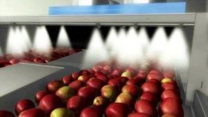 Каким воском покрывают яблоки