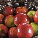 Правда ли что яблоки покрывают воском