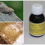 Экстракт личинок восковой моли