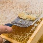 Мед с воском как называется